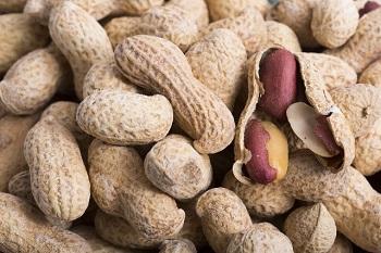 nuts (5)