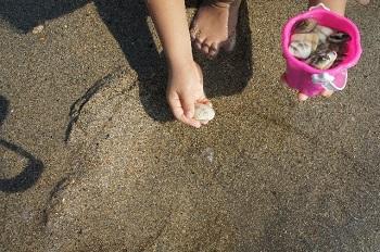 shellfish (2)