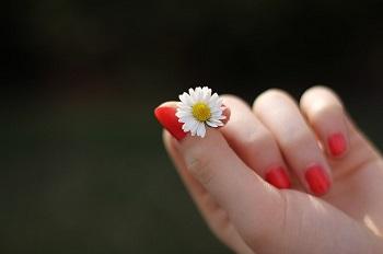 hand (1)