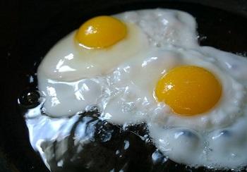 egg (3)